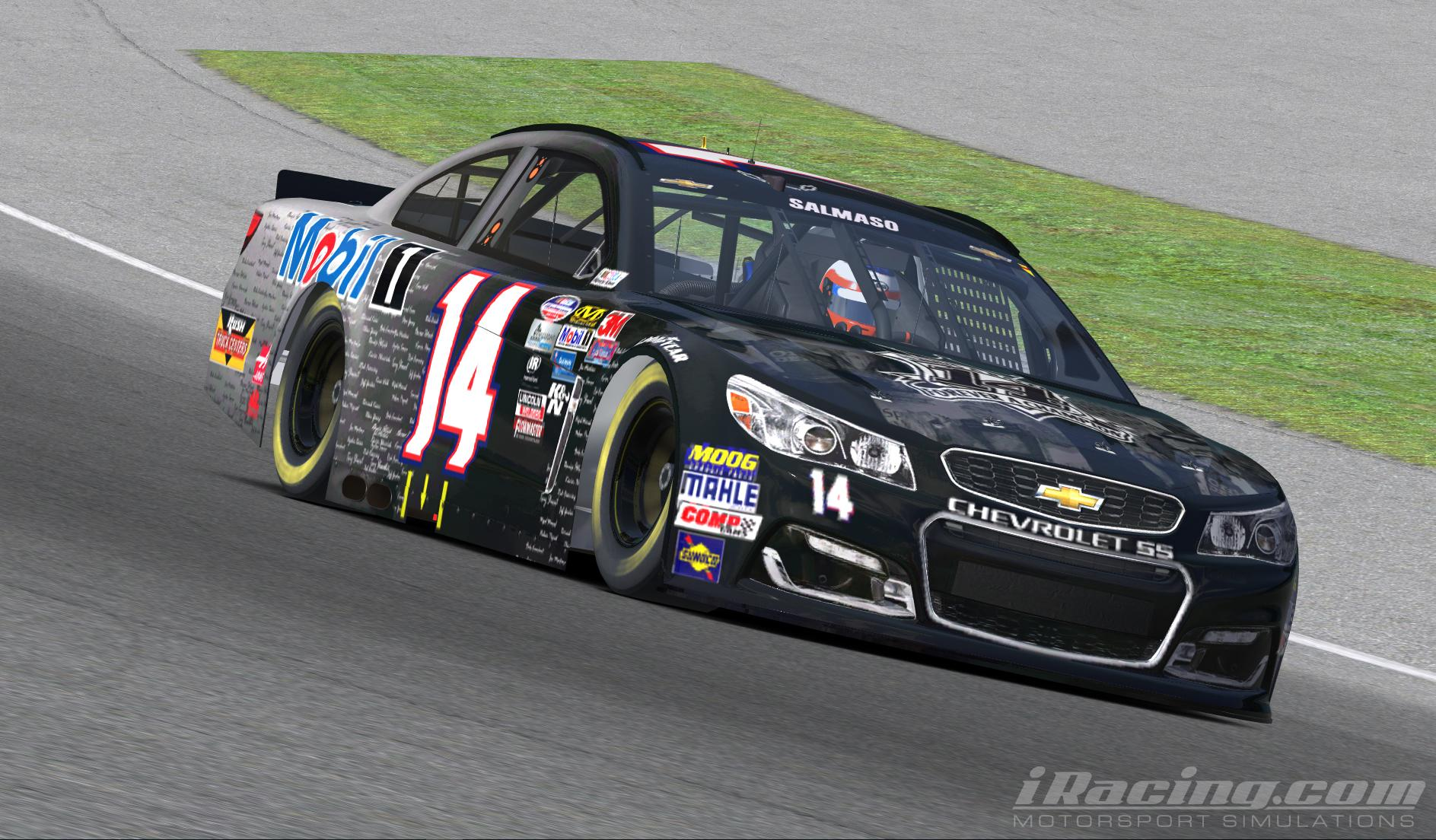 Preview of Tony Stewart Last Ride by Luis Salmaso