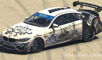The Kraken BMW GT4